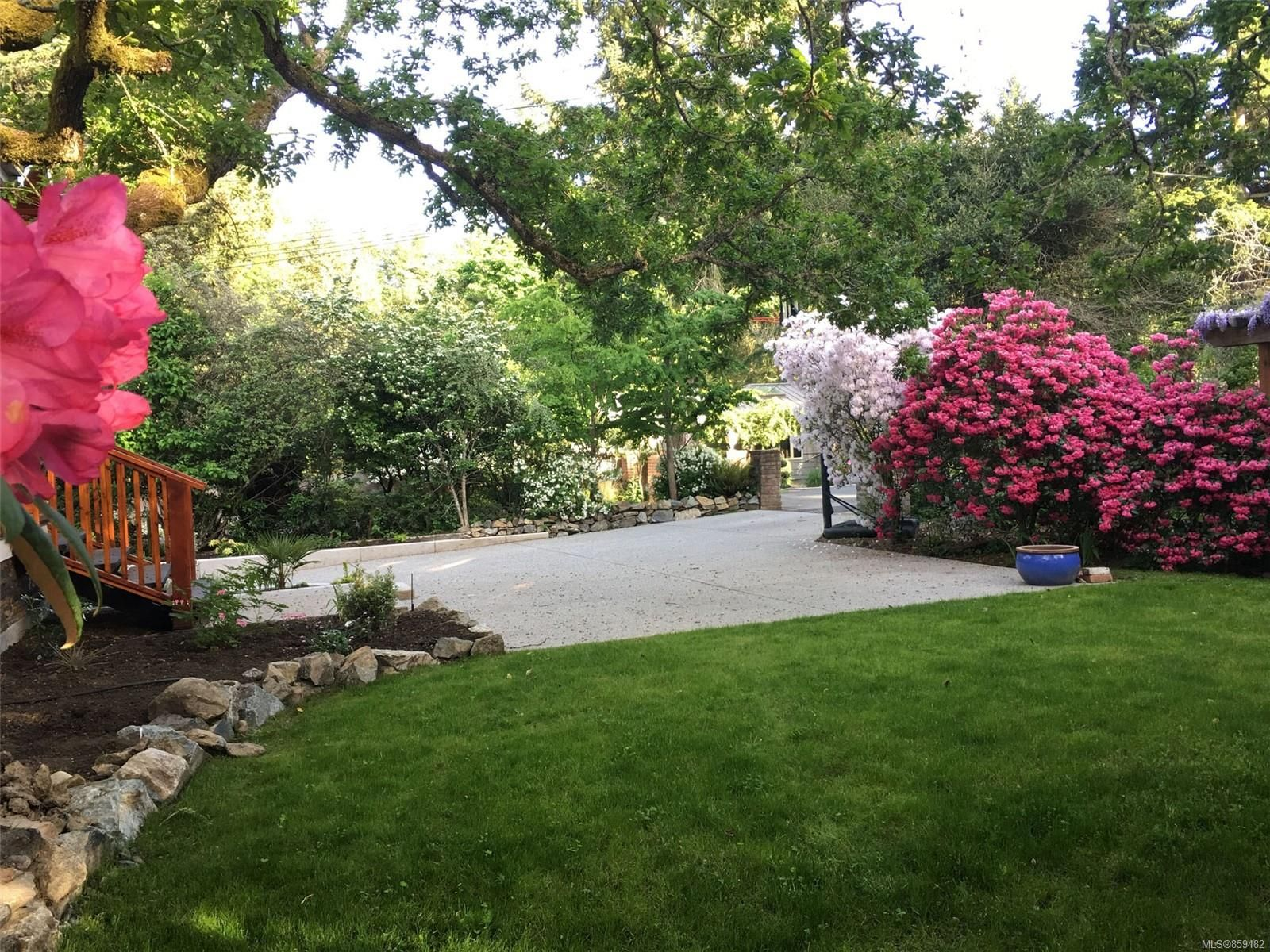 Photo 41: Photos: 4086 Monarch Pl in : SE Arbutus House for sale (Saanich East)  : MLS®# 859482