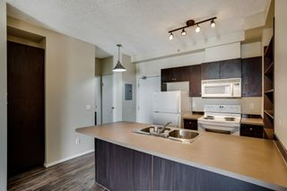 Photo 9: 3309 73 Erin Woods Court SE in Calgary: Erin Woods Apartment for sale : MLS®# A1100323