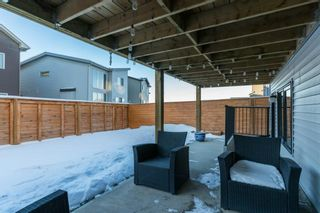 Photo 36: 34 Carringvue Drive NW in Calgary: Carrington Detached for sale : MLS®# A1056953
