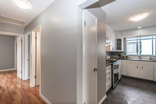 Photo 21: 3005 DOVERBROOK Road SE in Calgary: Dover Detached for sale : MLS®# A1020927