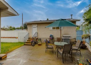 Photo 22: 3135 Rae Crescent SE in Calgary: Albert Park/Radisson Heights Detached for sale : MLS®# A1139656
