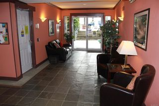 Photo 3: 305 275 First St in : Du West Duncan Condo for sale (Duncan)  : MLS®# 860552