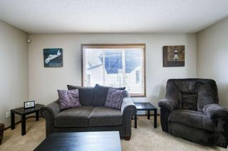 Photo 16: 234 ELGIN View SE in Calgary: McKenzie Towne Detached for sale : MLS®# A1035029