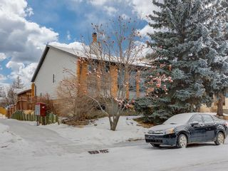 Photo 29: 141 Marquis Place SE: Airdrie Detached for sale : MLS®# A1063847
