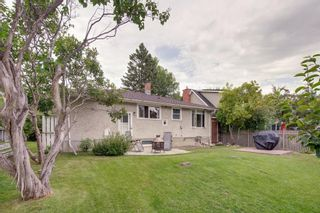 Photo 39: 3531 35 Avenue SW in Calgary: Rutland Park Detached for sale : MLS®# A1059798