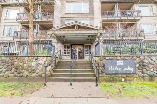 """Photo 33: 208 250 SALTER Street in New Westminster: Queensborough Condo for sale in """"PADDLERS LANDING"""" : MLS®# R2542712"""