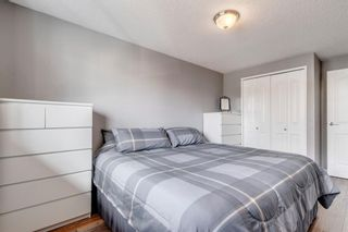 Photo 15: 704 43 Street SE in Calgary: Forest Heights Semi Detached for sale : MLS®# A1096355