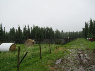 Photo 19: 70041 Highway 591: Rural Clearwater County Detached for sale : MLS®# C4305359