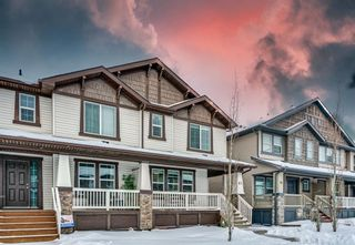 Photo 1: 65 Skyview Point Green NE in Calgary: Skyview Ranch Semi Detached for sale : MLS®# A1070707