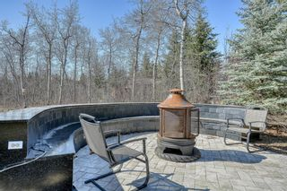 Photo 45: 10 Pinehurst Drive: Heritage Pointe Detached for sale : MLS®# A1101058