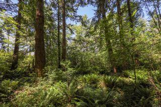 Photo 18: 1752 Little River Rd in : CV Comox Peninsula Land for sale (Comox Valley)  : MLS®# 878788