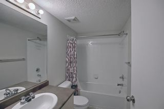 Photo 15: 4306 4975 130 Avenue SE in Calgary: McKenzie Towne Apartment for sale : MLS®# A1082092