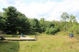 Photo 10: 3764 County Rd 46 in Havelock-Belmont-Methuen: Havelock House (Bungalow) for sale : MLS®# X5364760