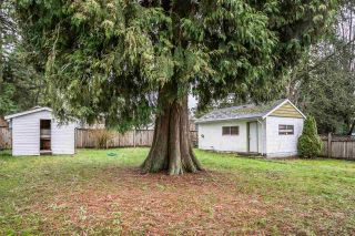 Photo 18: 13038 107A Avenue in Surrey: Whalley House for sale (North Surrey)  : MLS®# R2237848
