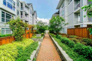 """Photo 27: 311 3142 ST JOHNS Street in Port Moody: Port Moody Centre Condo for sale in """"SONRISA"""" : MLS®# R2604670"""