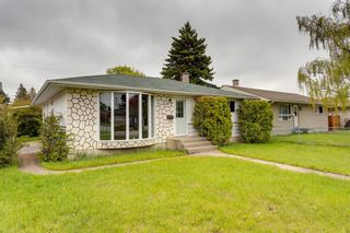 Photo 33: 2408 39 Street SE in Calgary: Forest Lawn Detached for sale : MLS®# A1139948