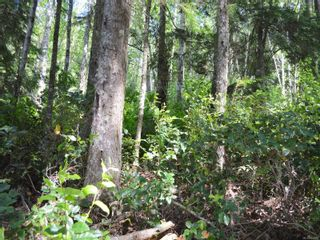 Photo 12: Lot 7 Pearse Island in : Isl Small Islands (North Island Area) Land for sale (Islands)  : MLS®# 862466