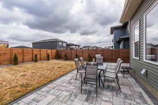 Photo 44: 2929 KOSTASH Drive in Edmonton: Zone 56 House for sale : MLS®# E4243548