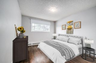 Photo 15: 305 1530 16 Avenue SW in Calgary: Sunalta Apartment for sale : MLS®# A1131555