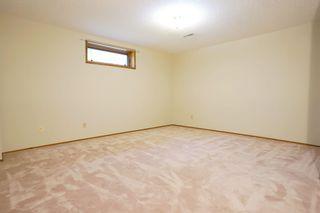 Photo 20: 195 Rhatigan Road E in Edmonton: Zone 14 House for sale : MLS®# E4254663