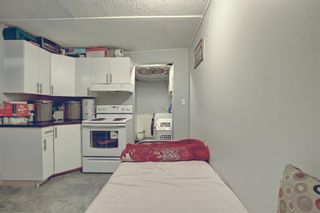 Photo 25: 142 Martindale Boulevard NE in Calgary: Martindale Detached for sale : MLS®# A1111282