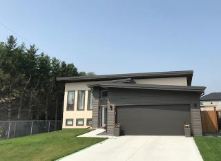 Main Photo: 217 Sauveur Place in Lorette: Serenity Trails Residential for sale (R05)  : MLS®# 202119755