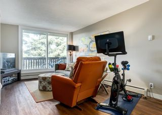 Photo 14: 404 507 57 Avenue SW in Calgary: Windsor Park Apartment for sale : MLS®# A1112895