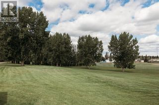Photo 32: 39 Greenbrook Road in Brooks: House for sale : MLS®# A1146568