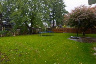 Photo 19: 13098 95 Avenue in Surrey: Queen Mary Park Surrey House for sale : MLS®# R2508069