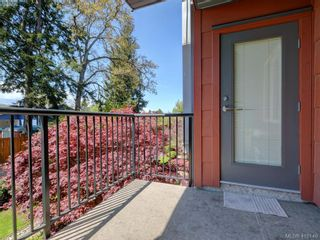 Photo 13: 205 4030 Borden St in VICTORIA: SE Lake Hill Condo for sale (Saanich East)  : MLS®# 812931