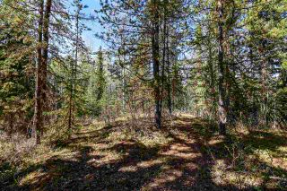 Photo 5: 3205 MILLAR Road in Smithers: Smithers - Rural House for sale (Smithers And Area (Zone 54))  : MLS®# R2475972