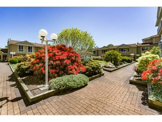 """Photo 18: 1 15875 MARINE Drive: White Rock Townhouse for sale in """"Southport"""" (South Surrey White Rock)  : MLS®# R2170589"""