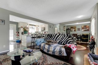Photo 9: 739 64 Avenue NW in Calgary: Thorncliffe Detached for sale : MLS®# A1086538