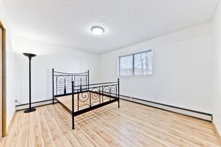 Photo 18: 101 123 22 Avenue NE in Calgary: Tuxedo Park Apartment for sale : MLS®# A1091219