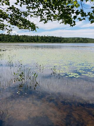 Photo 3: 407 Langille Lake Road in Blockhouse: 405-Lunenburg County Residential for sale (South Shore)  : MLS®# 202117816