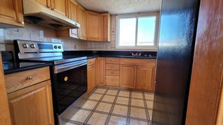 Photo 6: 503 1540 29 Street NW in Calgary: St Andrews Heights Apartment for sale : MLS®# A1096149
