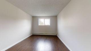 Photo 14: 212 2624 MILL WOODS Road E in Edmonton: Zone 29 Condo for sale : MLS®# E4263901