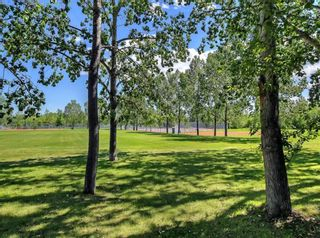 Photo 40: 31 27 Silver Springs Drive NW in Calgary: Silver Springs Row/Townhouse for sale : MLS®# A1147990