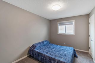 Photo 30: 260 Nolancrest Heights NW in Calgary: Nolan Hill Detached for sale : MLS®# A1117990