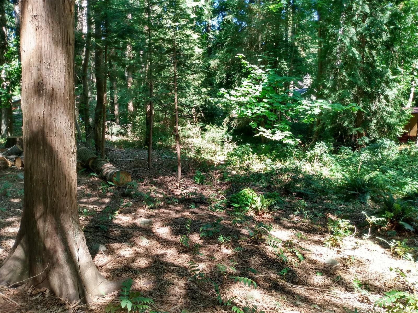 Main Photo: 99 Pirates Lane in : Isl Protection Island Land for sale (Islands)  : MLS®# 882311