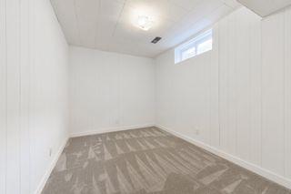 Photo 24: 11411 37A Avenue in Edmonton: Zone 16 House for sale : MLS®# E4255502