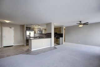 Photo 28: 302 429 14 Street NW in Calgary: Hillhurst Apartment for sale : MLS®# A1075167