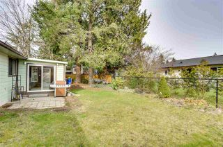 Photo 24: 4548 206B Street in Langley: Langley City House for sale : MLS®# R2552558