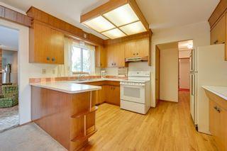 Photo 14: 7228 131A Avenue in Edmonton: Zone 02 House for sale : MLS®# E4252234