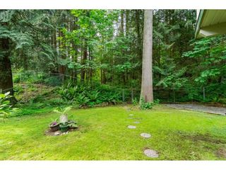 """Photo 37: 4067 199A Street in Langley: Brookswood Langley House for sale in """"BROOKSWOOD"""" : MLS®# R2461084"""