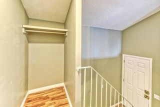 Photo 11: 1101 53A Street SE in Calgary: Penbrooke Meadows Row/Townhouse for sale : MLS®# A1093986