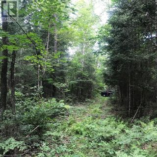 Photo 23: 0 OTTAWA Avenue in South River: Vacant Land for sale : MLS®# 40156406