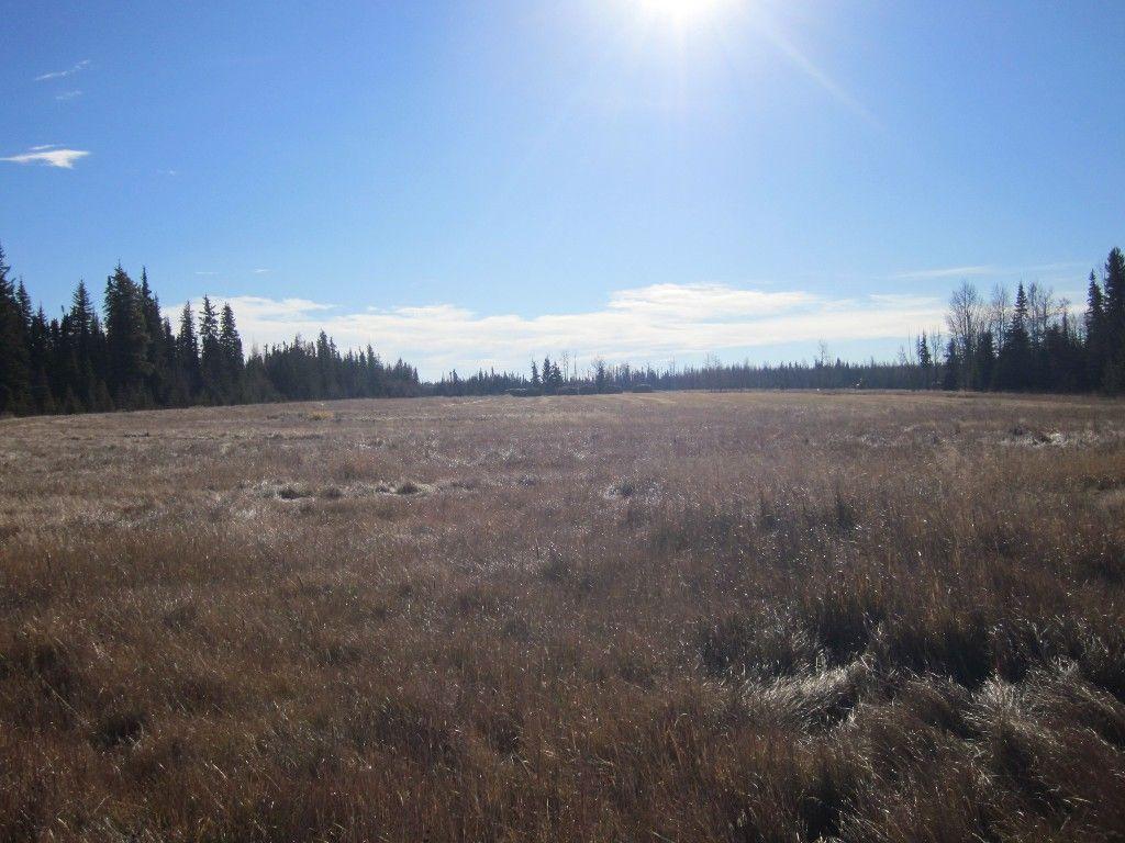 Main Photo: NE 13-54 Range Road 130: Niton Junction Rural Land for sale (Edson)  : MLS®# 32591