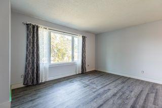 Photo 7: 8723 164 Street in Edmonton: Zone 22 House for sale : MLS®# E4263383