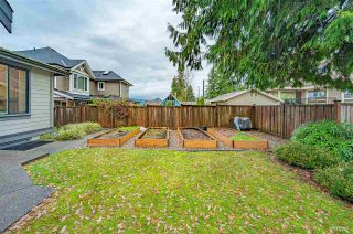 Photo 38: 973 BLUE MOUNTAIN STREET in Coquitlam: Harbour Chines House for sale : MLS®# R2523969